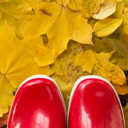 Närbild på röda fodrade gummistövlar som står på gula löv.
